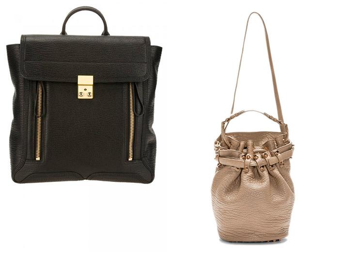 Pashli Backpack + Alexander Wang  Bucket